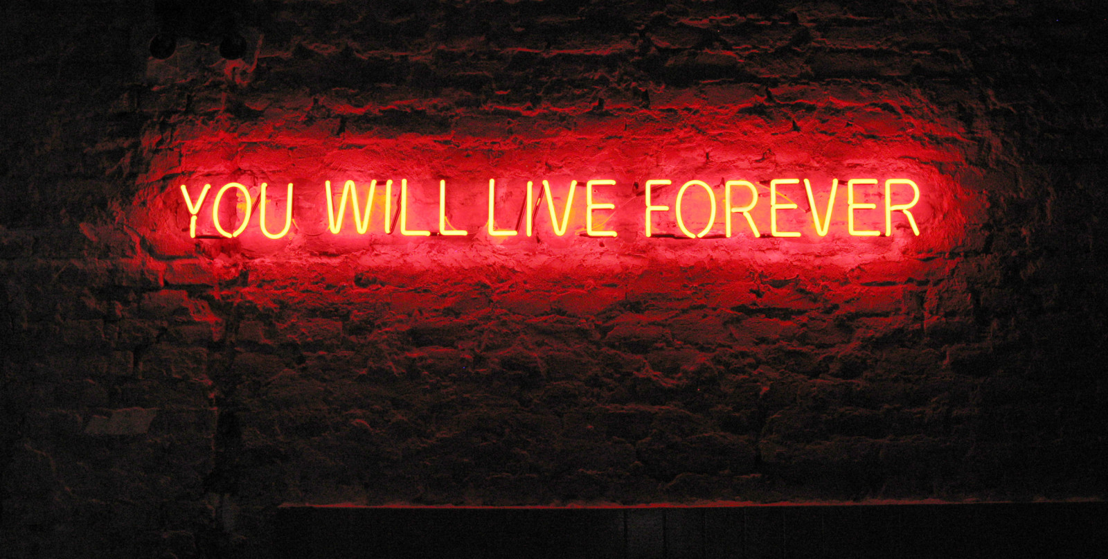 Neon Letters Huis : Home tim etchells